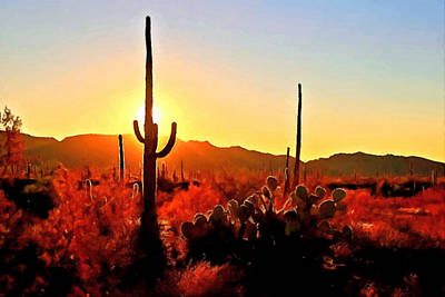 Painting - Saguaro National Park Sunset by Dr Bob Johnston