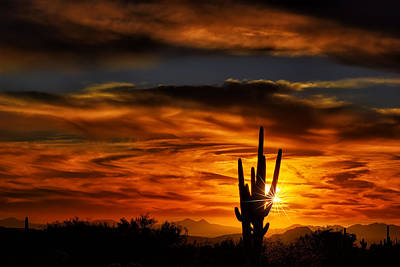 Photograph - Saguaro Sunset H31 by Mark Myhaver