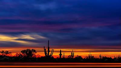 Mark Myhaver Rights Managed Images - Saguaro Sunset V16 Royalty-Free Image by Mark Myhaver