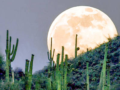 Painting - Saguaro Super Moon by Dr Bob Johnston