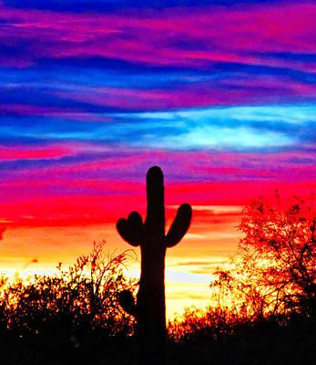 Photograph - Saguaro Taffy Sunrise by Judy Kennedy