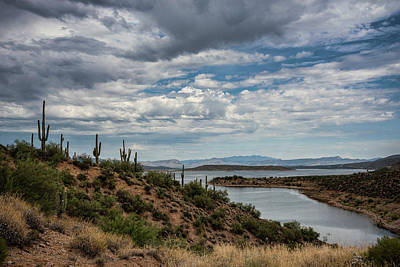 Photograph - Saguaro With A Lake View  by Saija Lehtonen