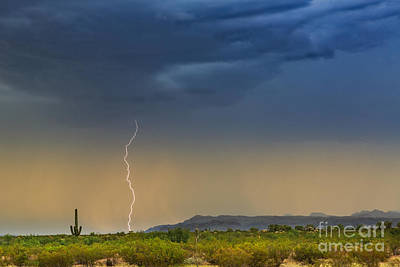 Saguaro With Lightning Art Print