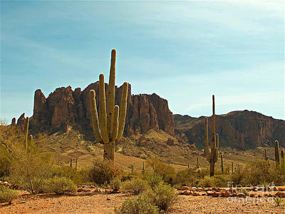 Photograph - Saguaros At Superstition Mountain by Kelly Holm