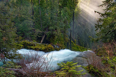 Photograph - Sahalie Falls by Leland D Howard