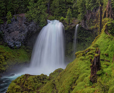 Photograph - Sahalie Falls by Loree Johnson