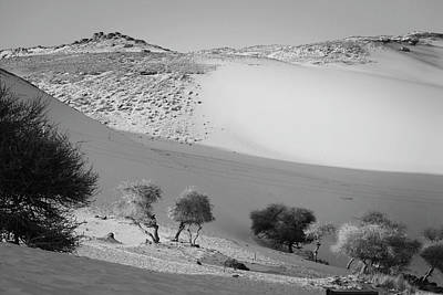 Photograph - Sahara by Silvia Bruno