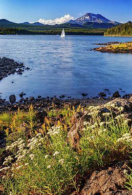 Photograph - Sail Away by Cat Connor