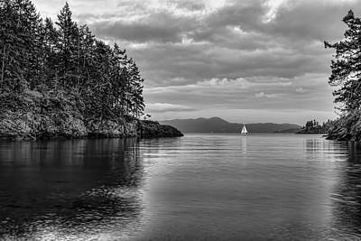 Photograph - Sail Away by Don Schwartz