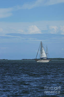 Photograph - Sail Away Painterly by Jennifer White