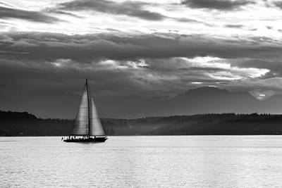 A Summer Evening Photograph - Sail Away by TL  Mair