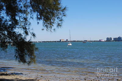 Photograph - Sail Boat On Sarasota Bay by Gary Wonning