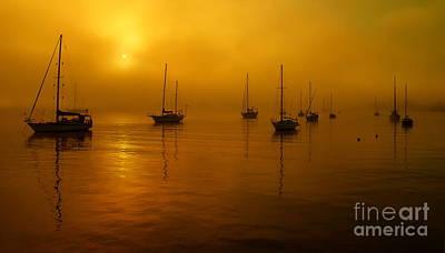 Sail Boats In Fog Art Print