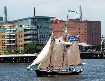 Photograph - Sail Boston by Mary Capriole