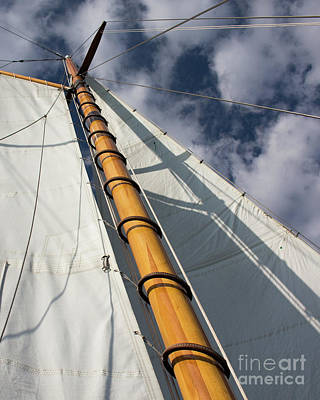 Photograph - Sail Into The Clouds 1 by Cheryl Del Toro