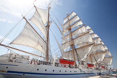 Photograph - Sail Training Ship Nippon Maru by Aiolos Greek Collections