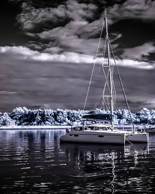 Photograph - Sailboat 02 by Hayden Hammond