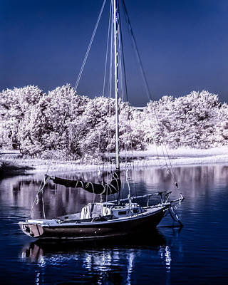 Photograph - Sailboat 13 by Hayden Hammond