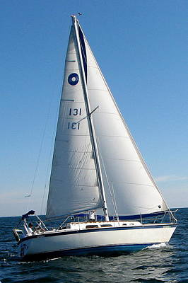 Photograph - Sailboat 131 by T Guy Spencer