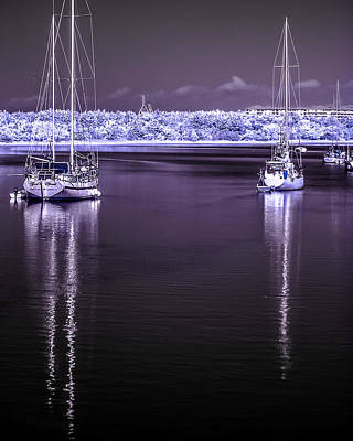 Photograph - Sailboat 24 by Hayden Hammond
