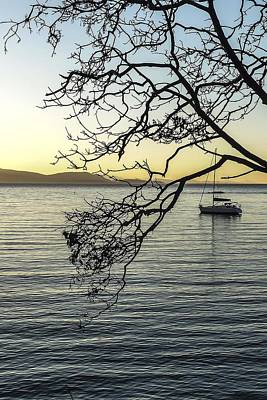Photograph - Sailboat Framed By Madrona Tree by NaturesPix