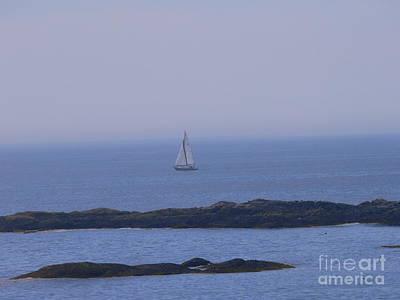 Photograph - Sailboat by Nancie DeMellia