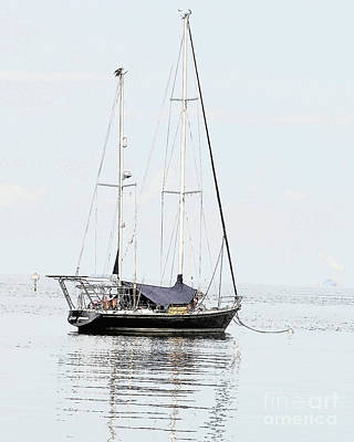 Photograph - Sailboat Number One by Robert  Suggs