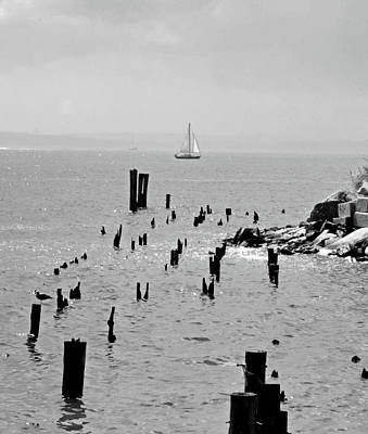 Photograph - Sailboat Off City Island, New York No. 1-1 by Sandy Taylor