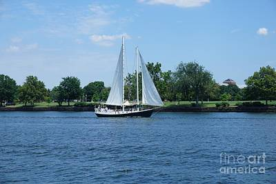 Photograph - Sailboat On The Potamac by Jimmy Clark