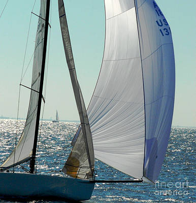 Photograph - Sailboat by Robert  Suggs