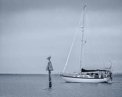 Photograph - Sailboat by Ron Pate