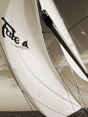 Sailboat Sails And Spinnaker Fate Beneteau 49 Charelston Sc Art Print