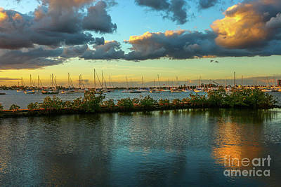 Photograph - Sailboats At Shepard's Park by Tom Claud