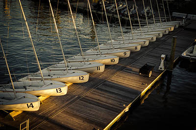 For Rent Photograph - Sailboats For Rent by Mountain Dreams