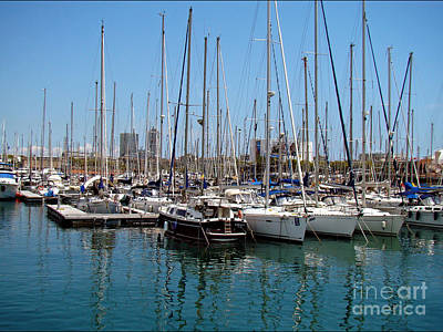 Photograph - Sailboats Galore by Sue Melvin