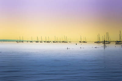 Photograph - Sailboats On The Bay by Colleen Kammerer
