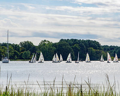 Photograph - Sailboats On The Chester by SG Atkinson