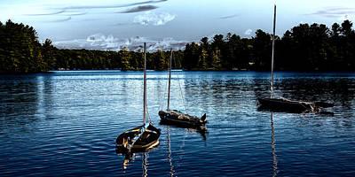 Photograph - Sailboats On The Lake by David Patterson