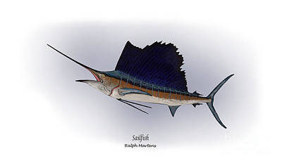 Angling Painting - Sailfish by Ralph Martens