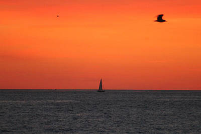 Photograph - Sailing At Dawn by Robert Banach