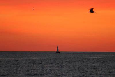 Photograph - Sailing At Dawn by Robert Banach
