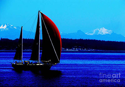 Sailing At Port Townsend Washington State Art Print