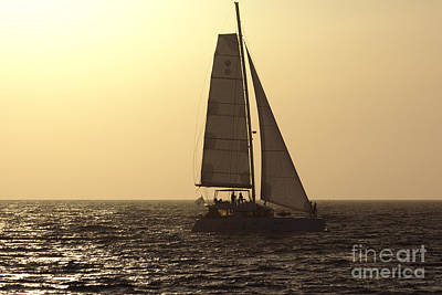 Photograph - Sailing Before Sunset by Jeremy Hayden
