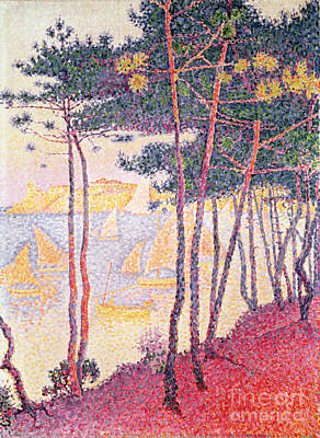 Sailing Boats And Pine Trees Art Print by Paul Signac