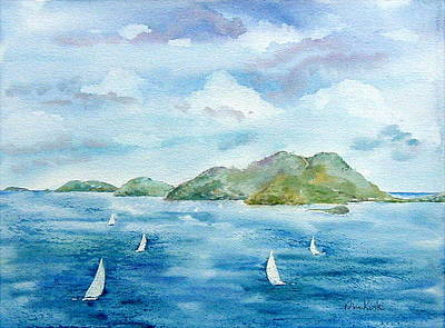 Painting - Sailing By Jost by Diane Kirk