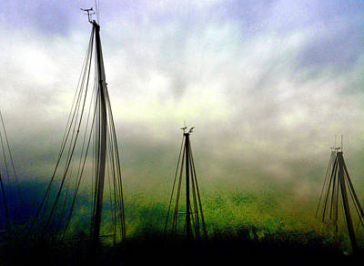 Photograph - Sailing by Darlene Evonne