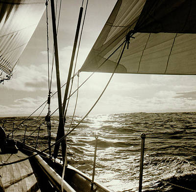 Photograph - Sailing by Frank DiMarco