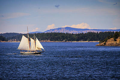 Photograph - Sailing Friday Harbor by Juli Ellen