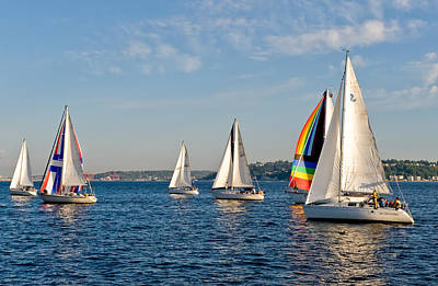 Sailing Group Seattle Art Print by Tom Dowd