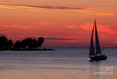 Sailing Home Art Print